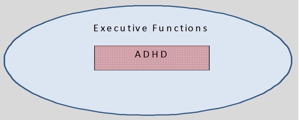 EF & ADHD