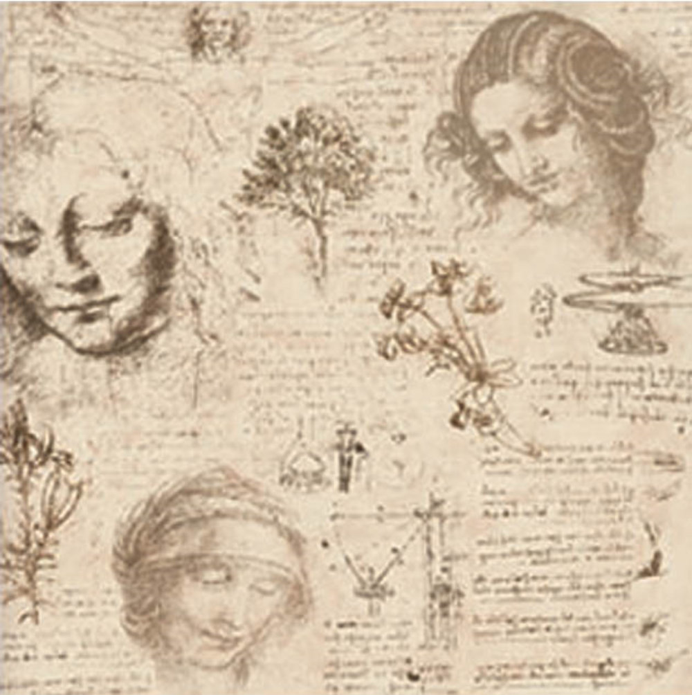 Many of Leonardo's sketches fascinate us because of the precision with which he studied the forms that elicit powerful emotions, with multiple perspectives resulting in slightly different effects.