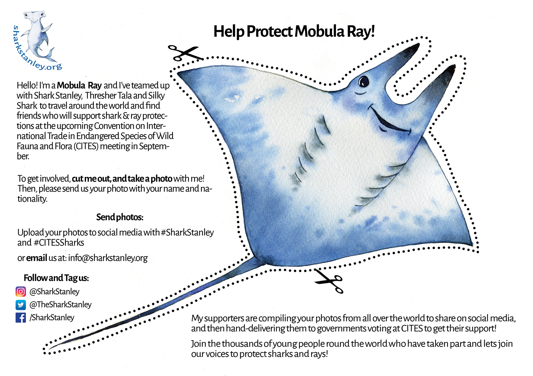 One-Pager - Mobula - 8.5x11.png