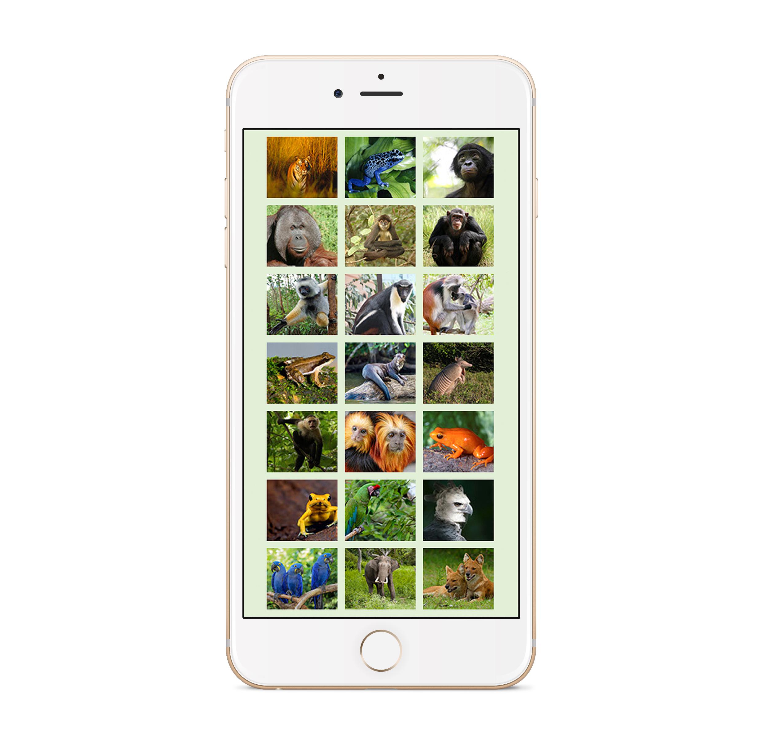 new app_2.jpg