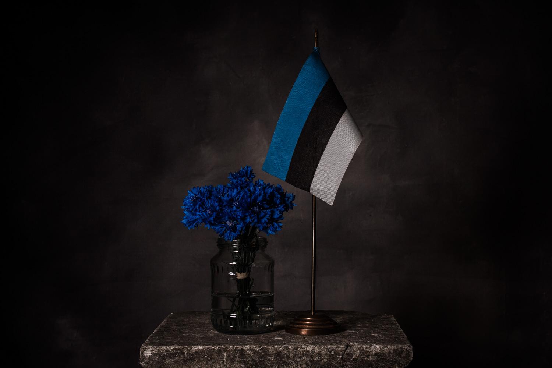 still-life_04_estonia_national_flowers_flag.jpg