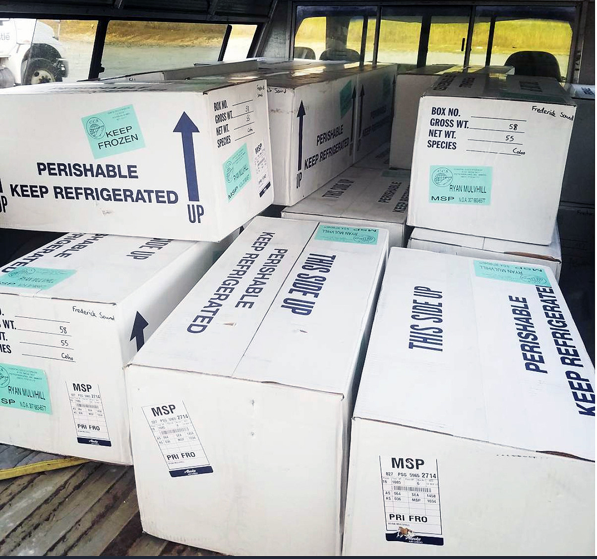 Salmon processed, frozen, packaged and ready for shipment. Photo courtesy of Frederick Sound Fish Co.