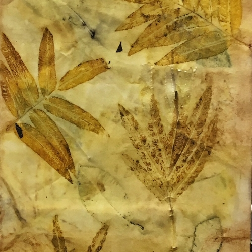 Walnut and Silk Oak Leaves on Arches papere