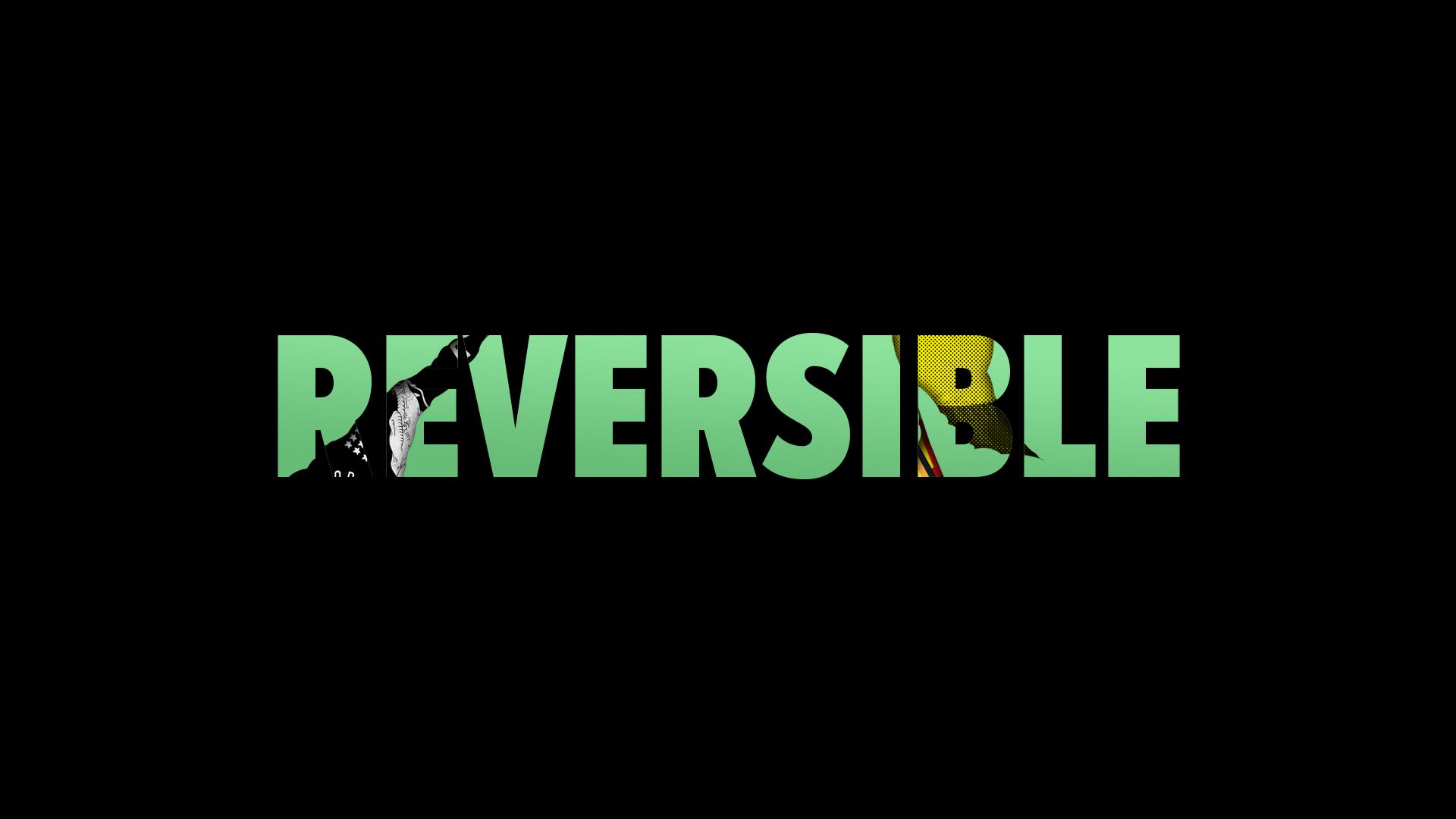 REVERSIBLE_1.jpg