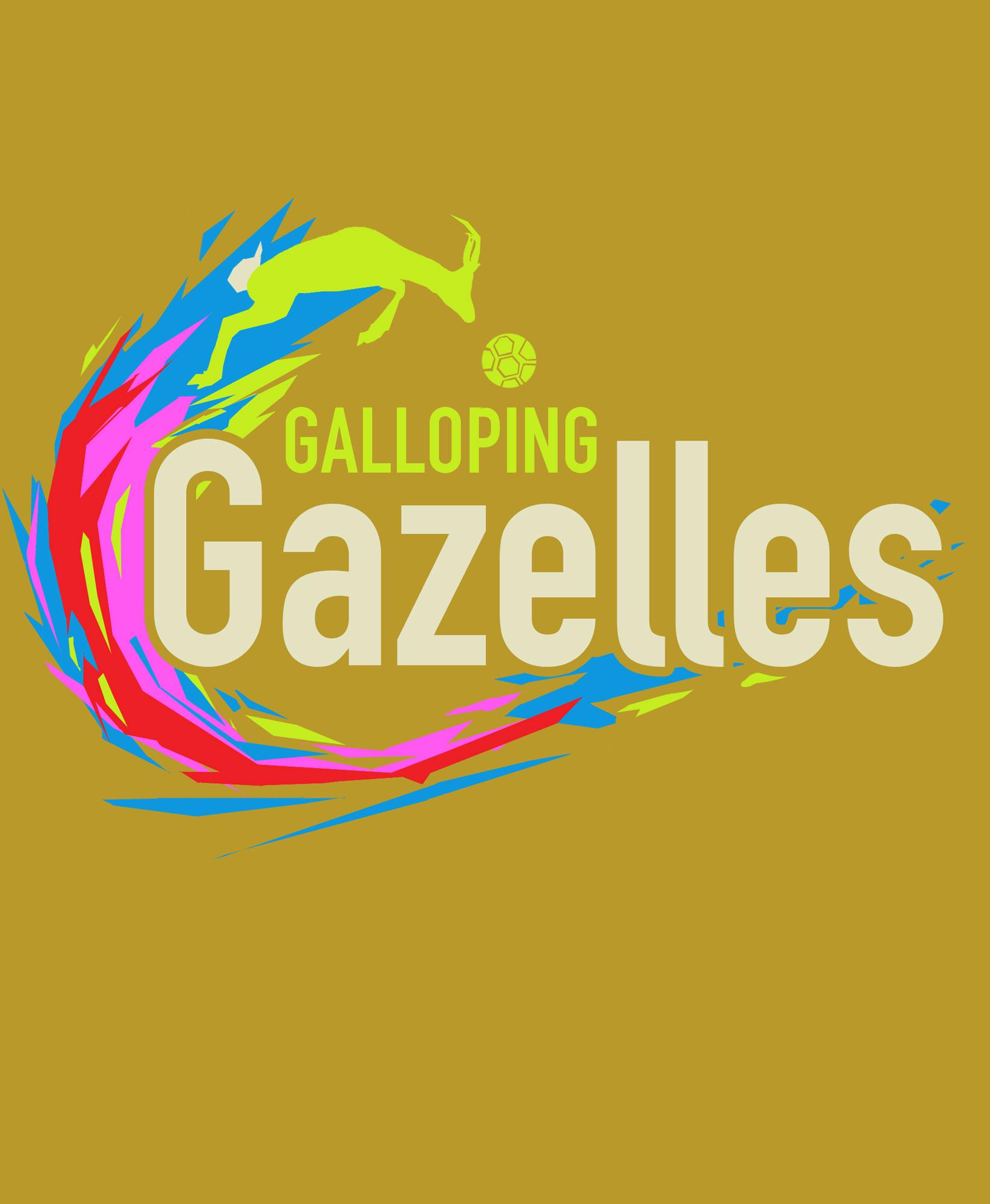 galloping_gazelles_B.jpg