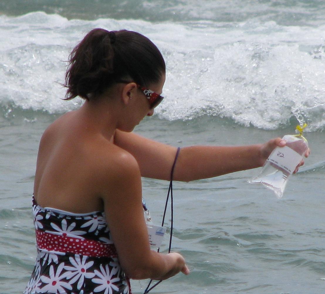 Beach monitoring  (City of Racine)