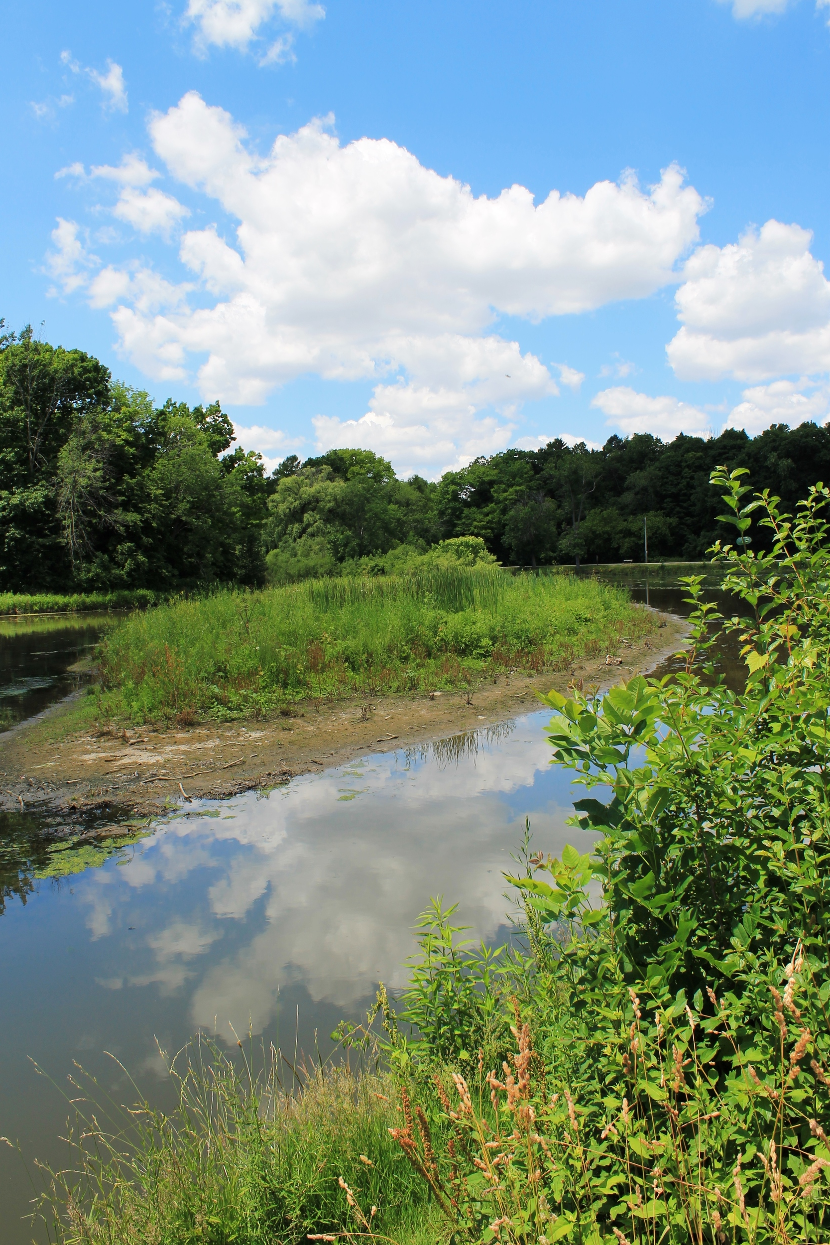 Sediment from farmland and stream bank erosion accumulates in Mill Pond in South Milwaukee.