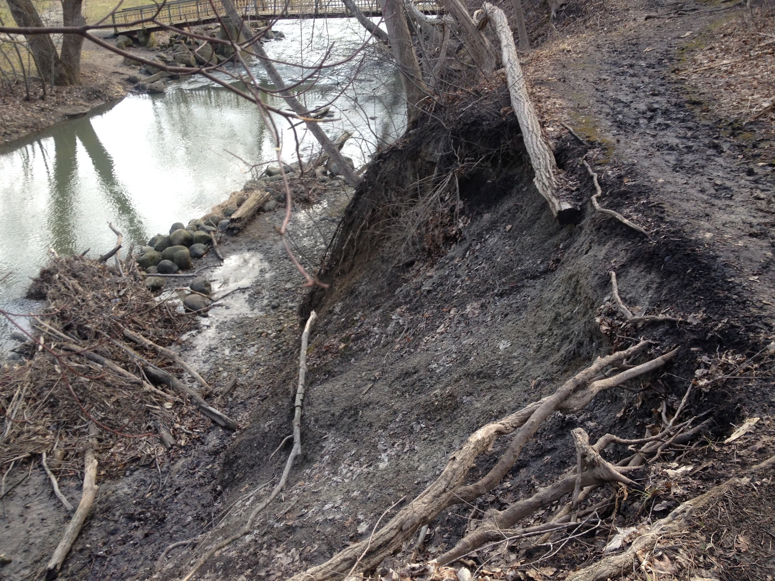 Sloughing banks add sediment to the main branch of the Pike River within Petrifying Springs Park in Kenosha.