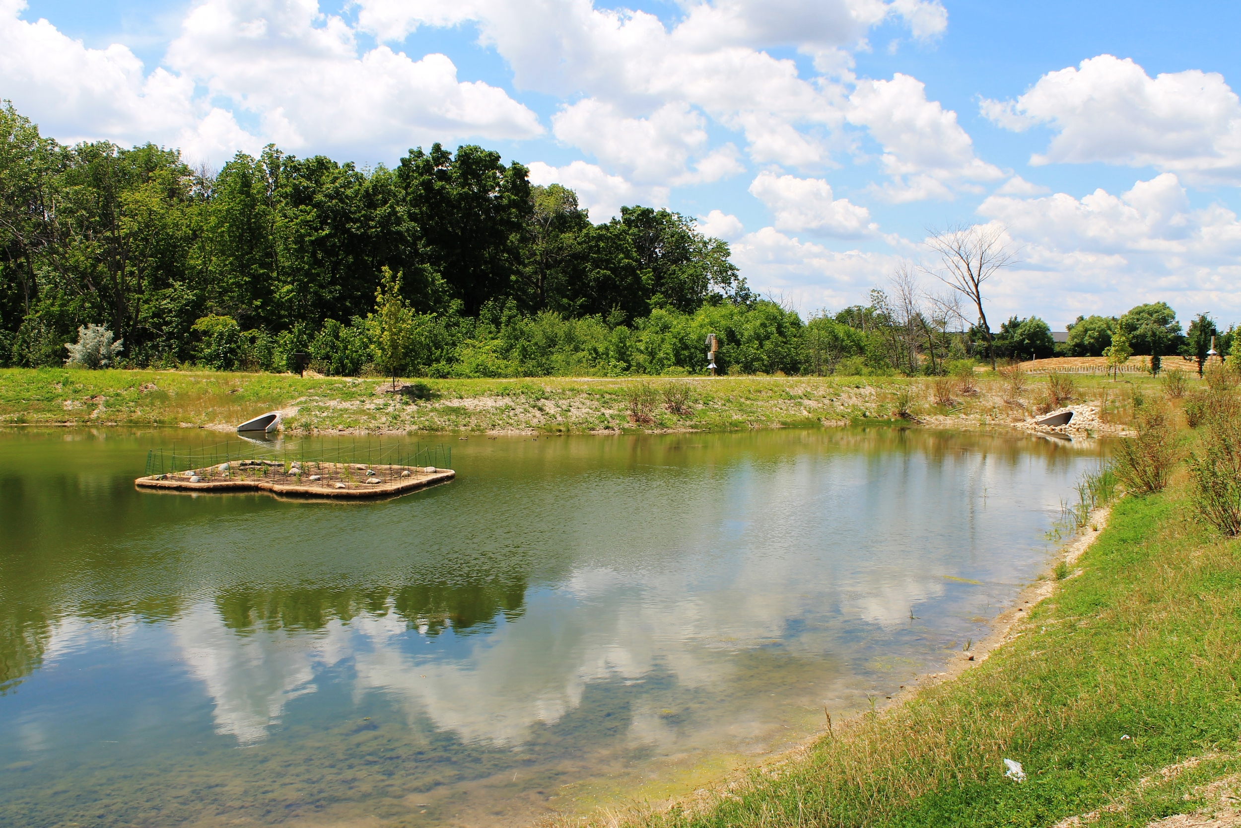 Pollution Reducing Floating Islands - Oak Creek's Drexel Commons