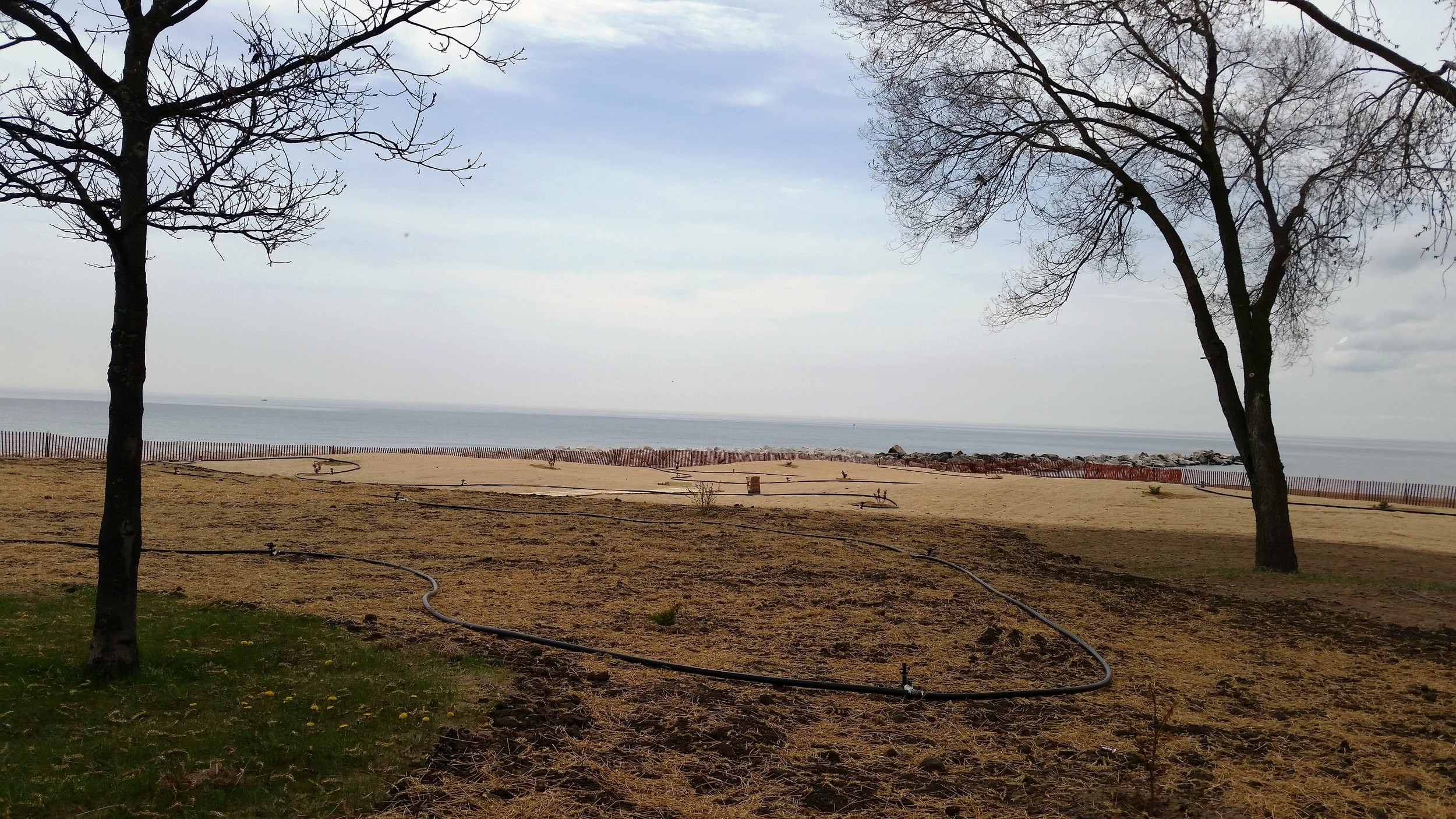 A vegetated transitional area at Eichelman Park Beach promotes infiltration of stormwater, creates new habitat and enhances the beauty of the park.