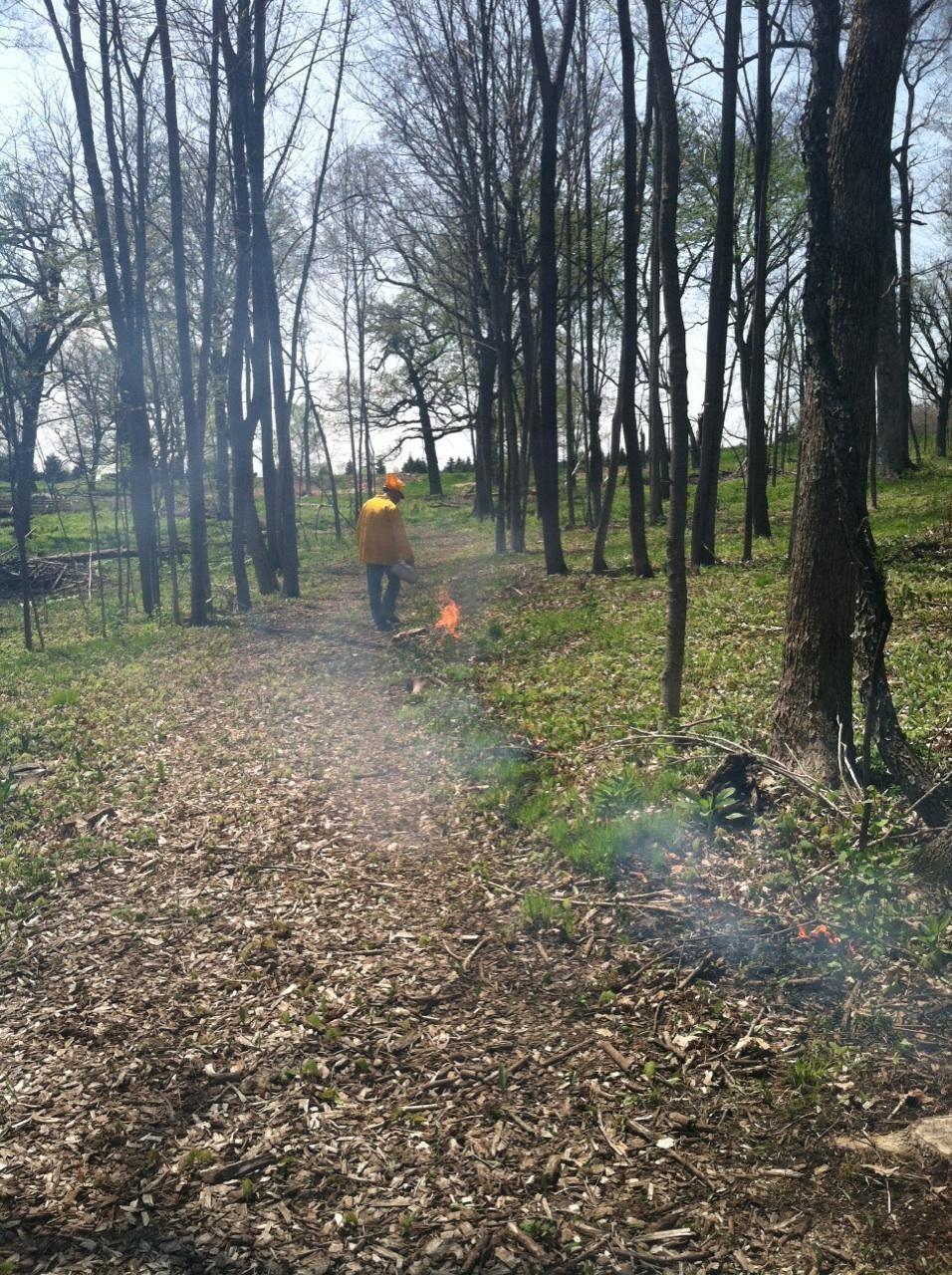 burn 2014.2.jpg