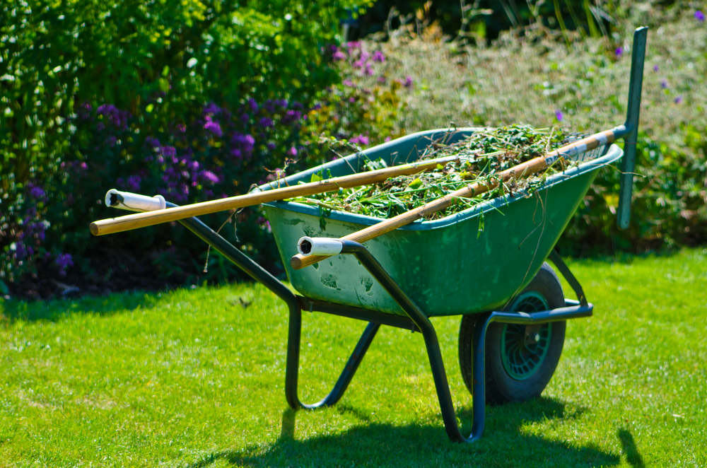 Americans love green lawns but fertilizers and pesticides can wreck havoc on water quality.