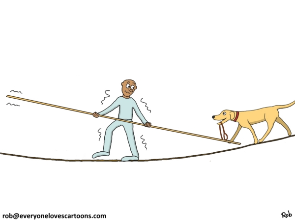labrador on tightrope cartoon
