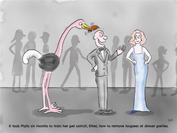 ostrich-party-cartoon