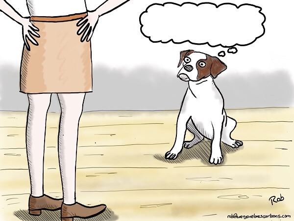 Caption the Cartoon