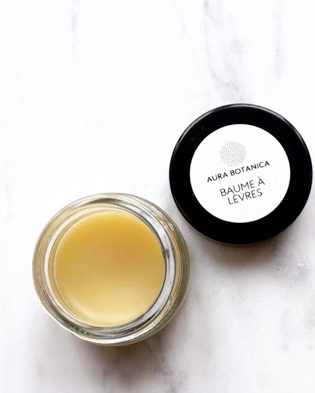 New👉🏻BAUME À LÈVRES👄 . Soigne • Protège • Nourrit . PROPRIÉTÉSCe baume anti-âge apaisera vos lèvres instantanément, les embellira au quotidien grâce à ses propriétés antioxydantes, nourrissantes et protectrices. A cela s'ajoute le délicat parfum fleurit des huiles essentielles de bois de rose et de géranium d'Égypte, qui sont toutes deux recommandées pour soigner les peaux sèches et abimées. . INGRÉDIENTSfleurs de calendula* + fleurs d'hibiscus* + huile de coco* + huile d'olive* + cire d'abeille* + concentré de phytostéroles (huile d'avocat; phytostéroles végétaux)huiles essentielles : bois de rose* + géranium d'Égypte**issu de l'agriculture biologique .  PRIX9 CHF 15ml .👉🏻aurabotanica.ch