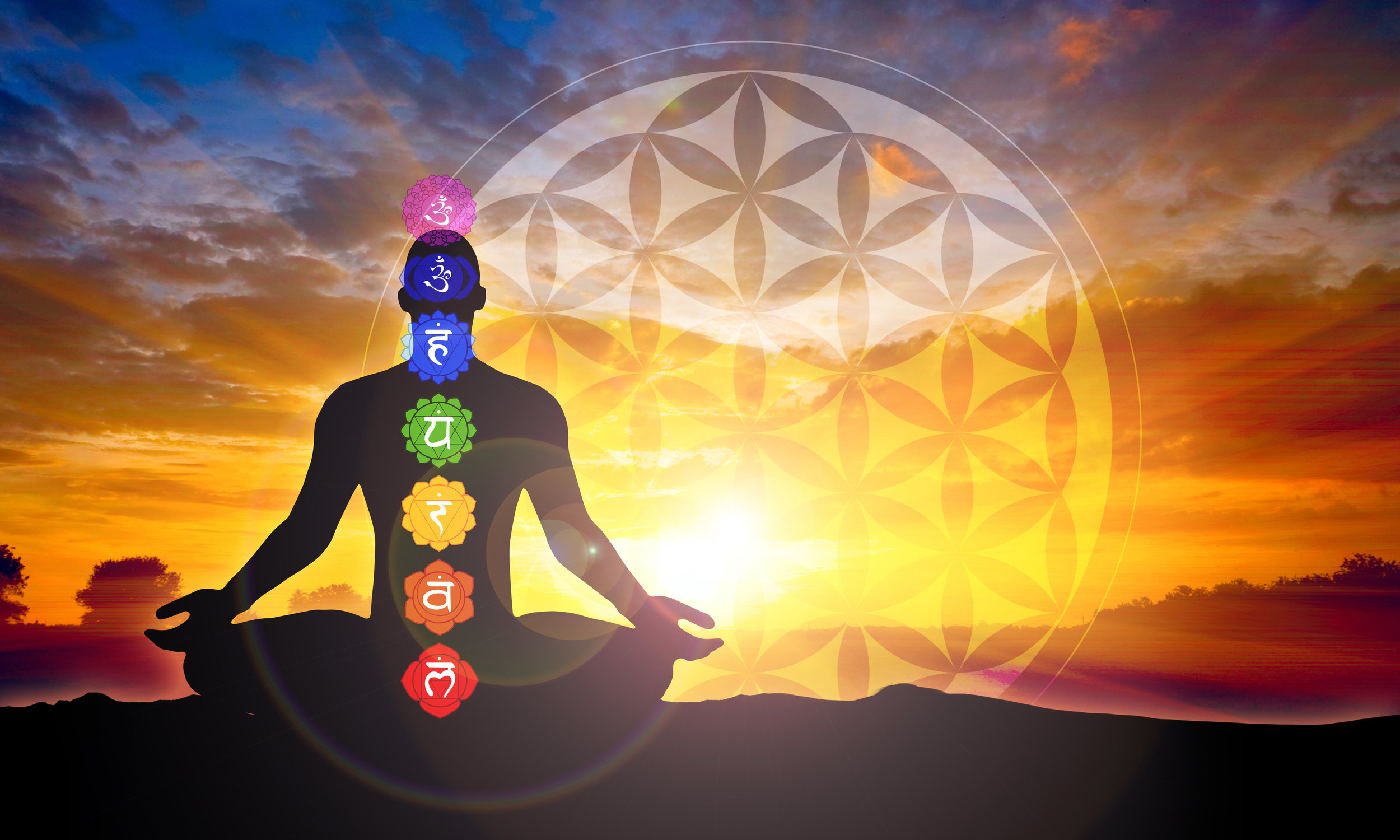chakras on body.jpeg