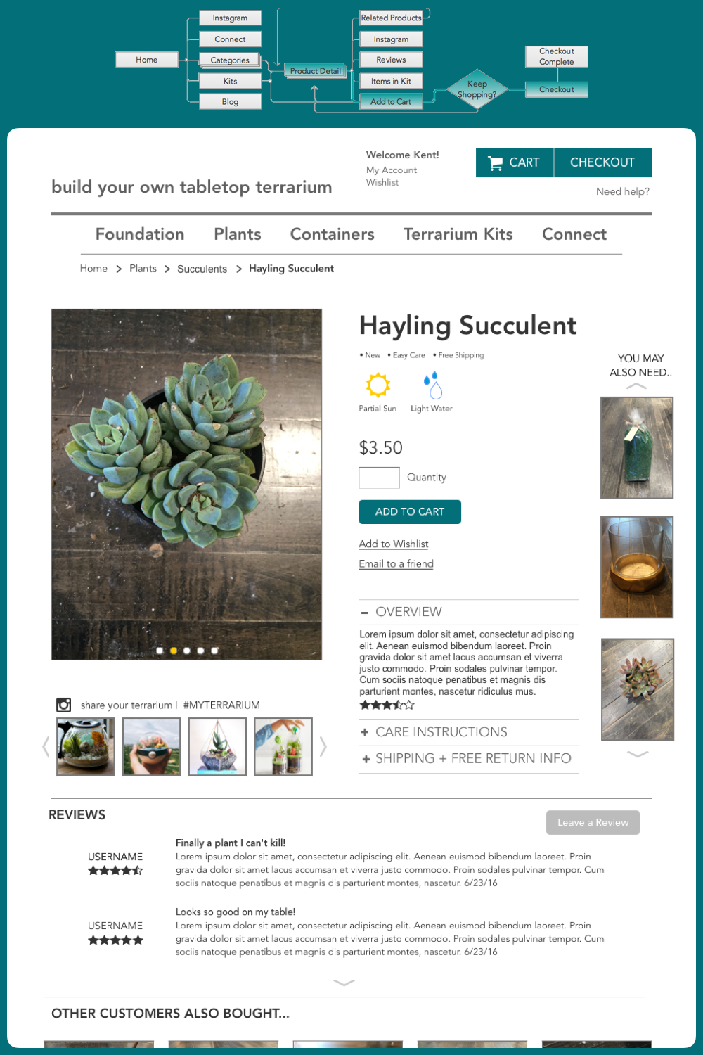 - On this page he can see reviews, shipping and return information. He really likes the Hayling succulent, so he decides to get two and proceed to checkout.