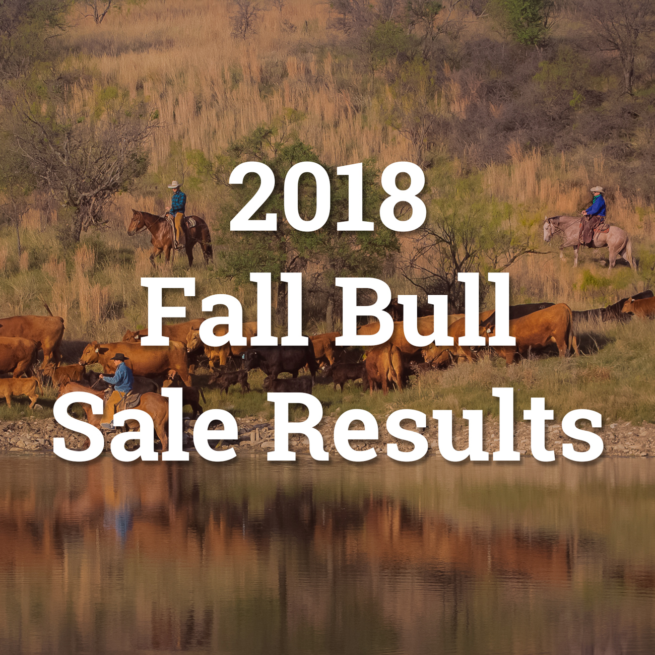 fall-2018-sale-results-button.jpg