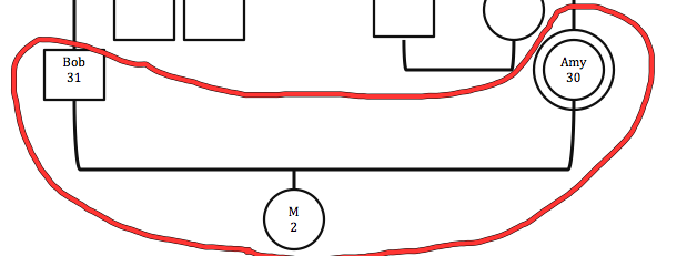 Figure 1: Amy's current family system