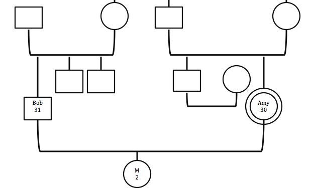 Figure 3: Amy and Bob's family, and their families of origin