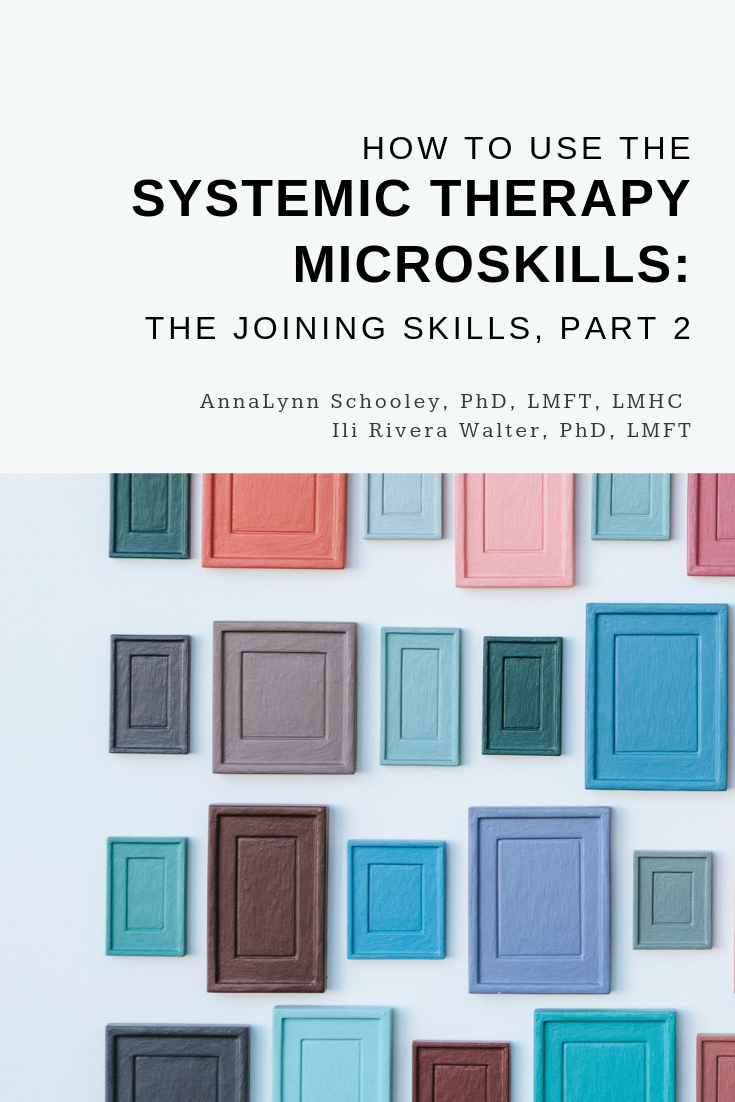 Systemic Therapy Microskills | Family Therapy Basics