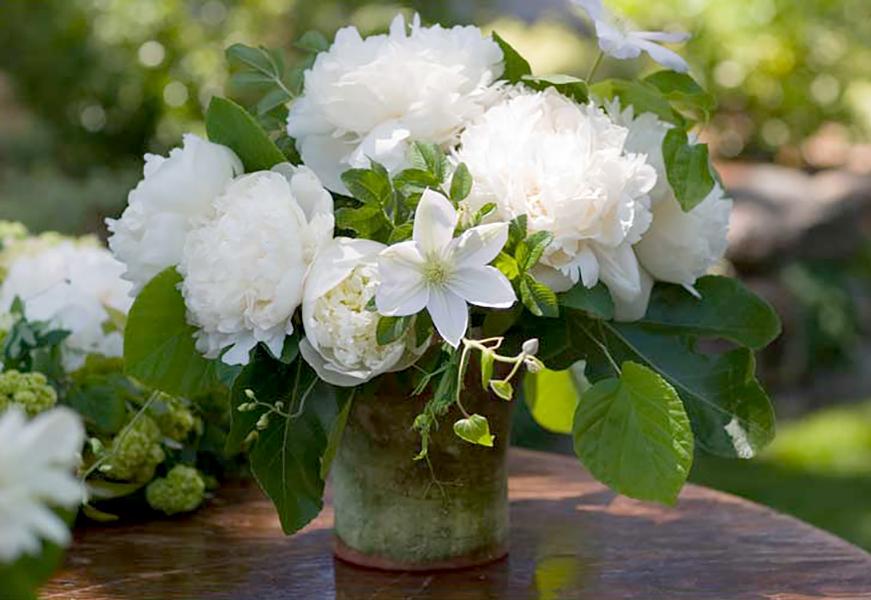 florali-Nspring1.jpg