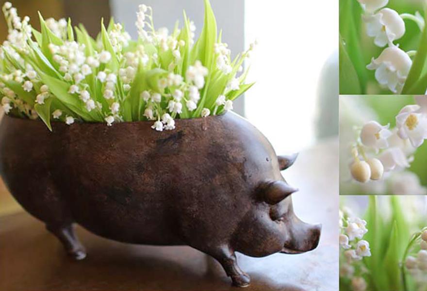 florali-Nspring4.jpg