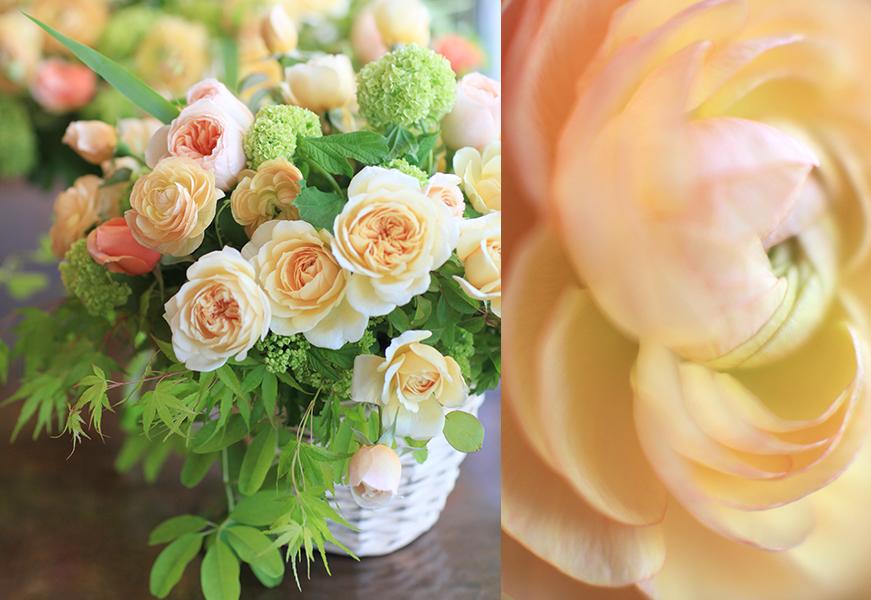 florali-Nspring7.jpg
