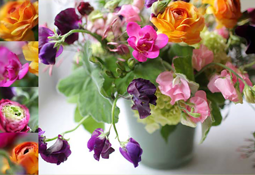florali-Nspring91.jpg