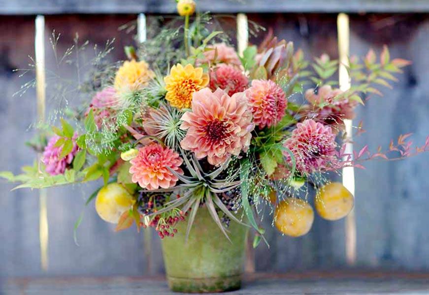 florali-Nfall19.jpg
