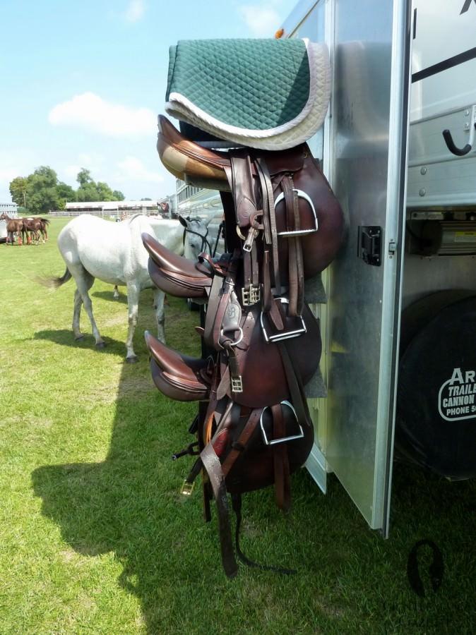 Saddles-674x900.jpg