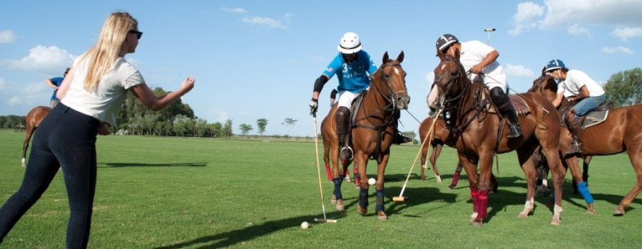 kitty-ball-throwing-polo-day-buenos-aires.jpg