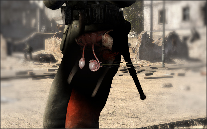 Psst, you can also shoot Hitler in the balls in Sniper Elite III