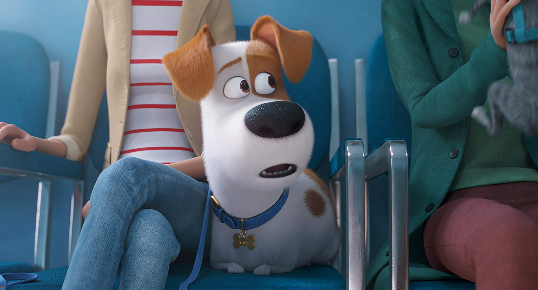 the secret life of pets 2.jpg