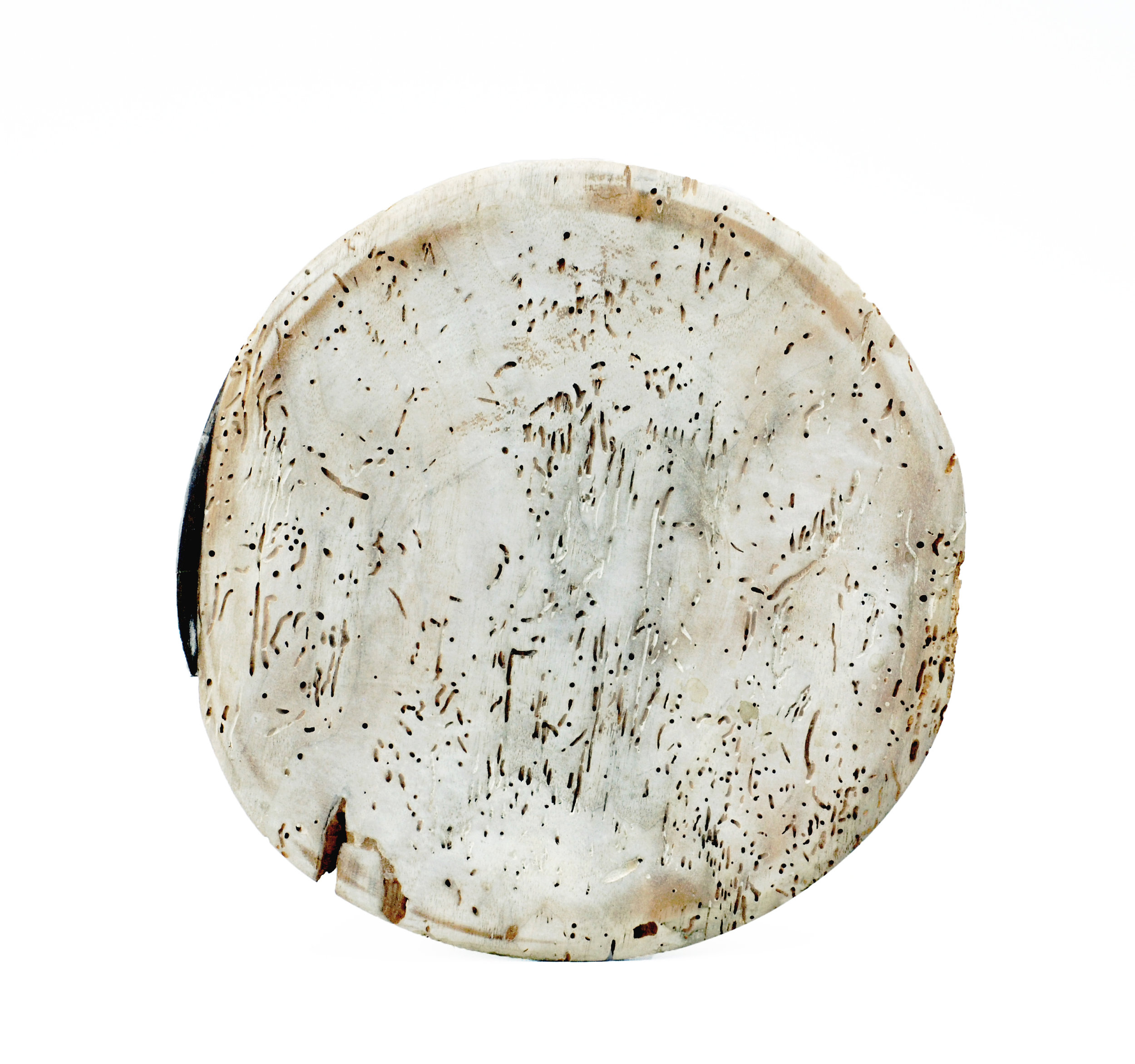 """turned plate , wood, milk paint, 10"""" diameter, 2012"""