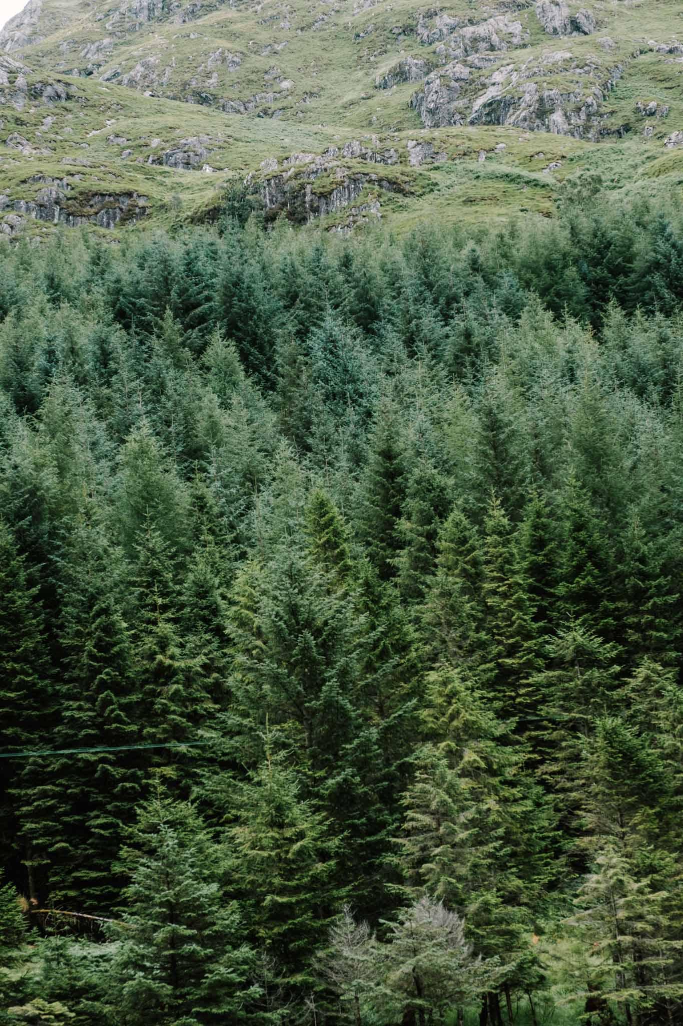Highland Explorer Tours-160725-151029.jpg