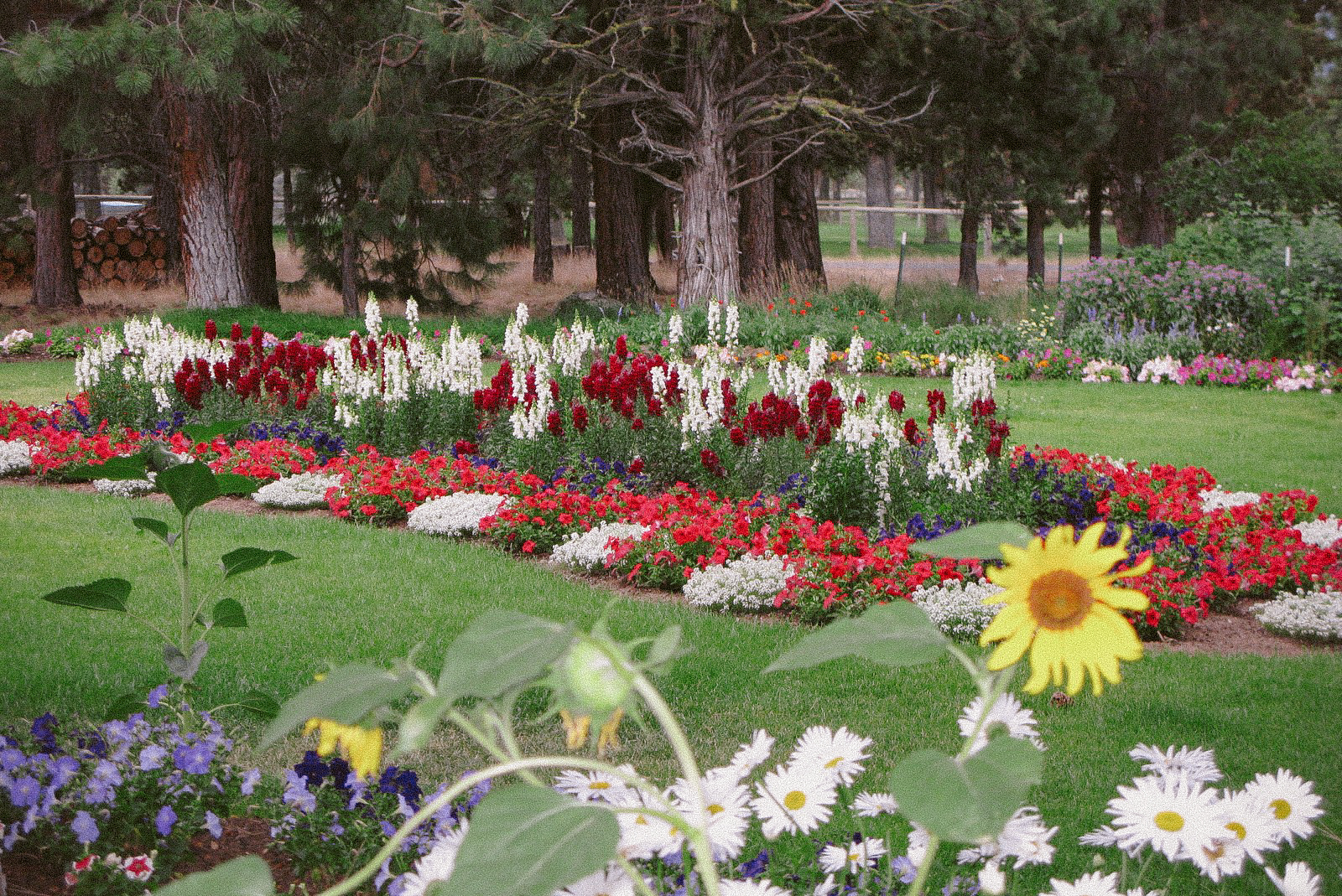 The landscaping on the grounds