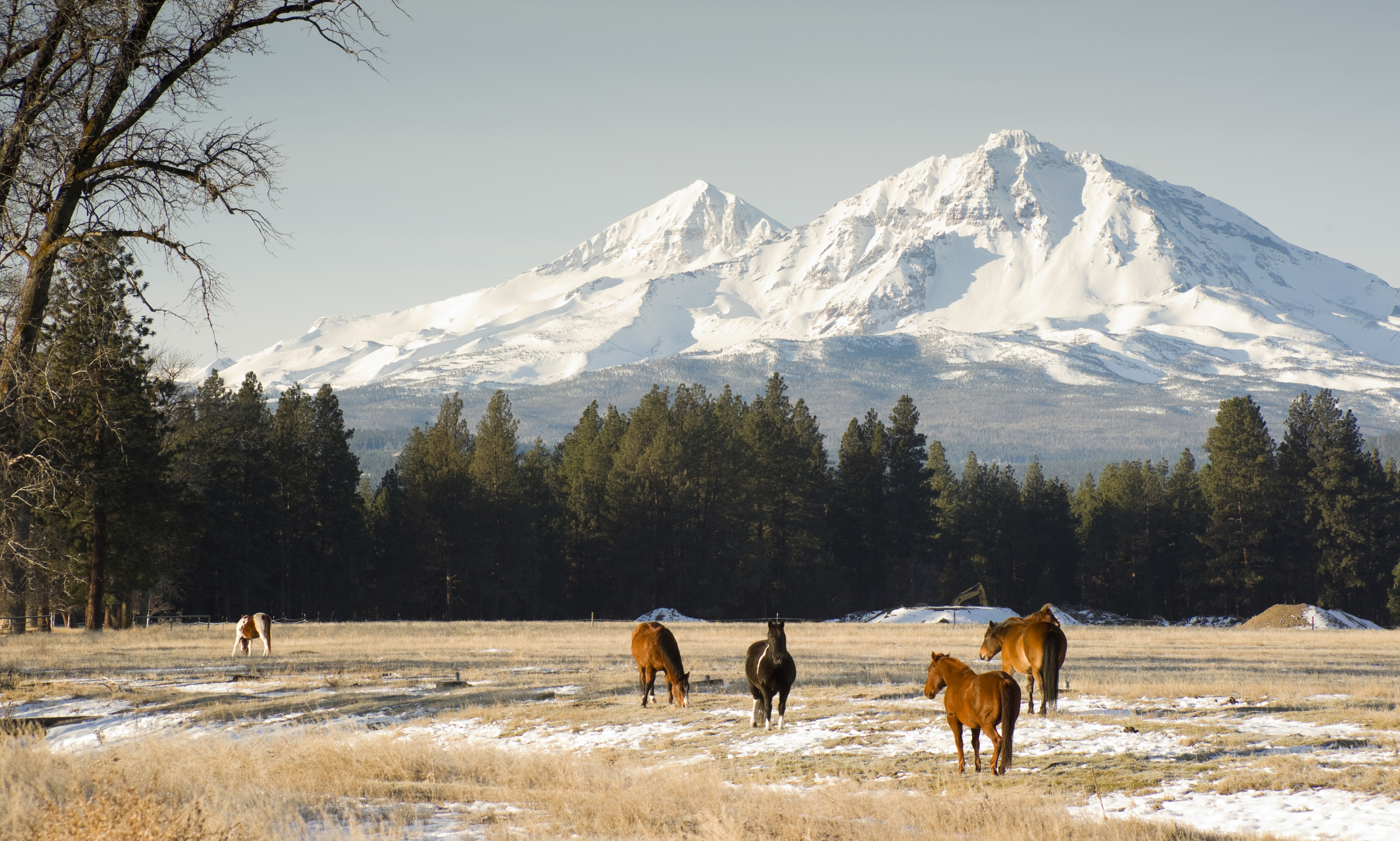 Middle and North Sister are dormant volcanoes