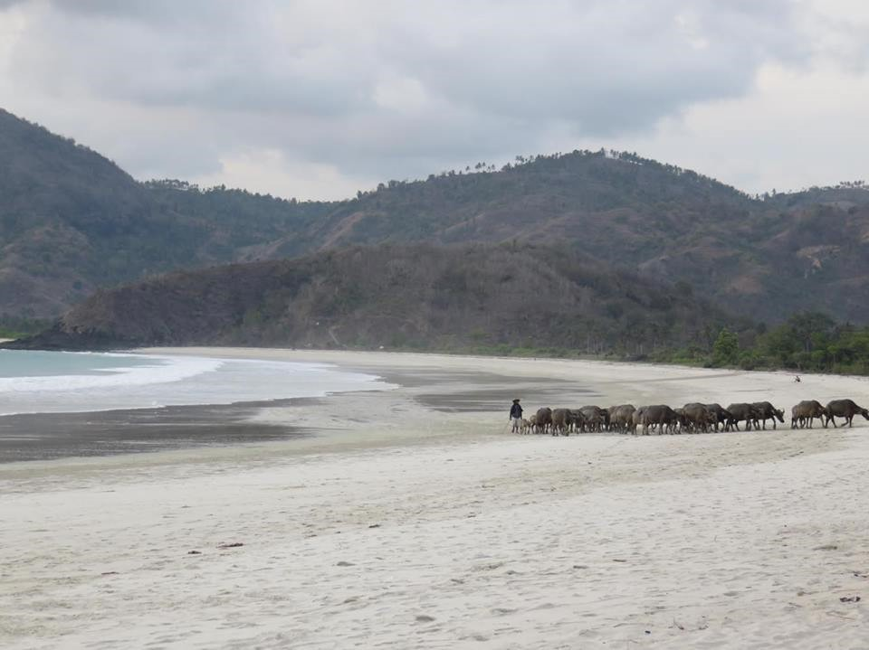 Selong Belanak Beach, Lombok, Indonesia