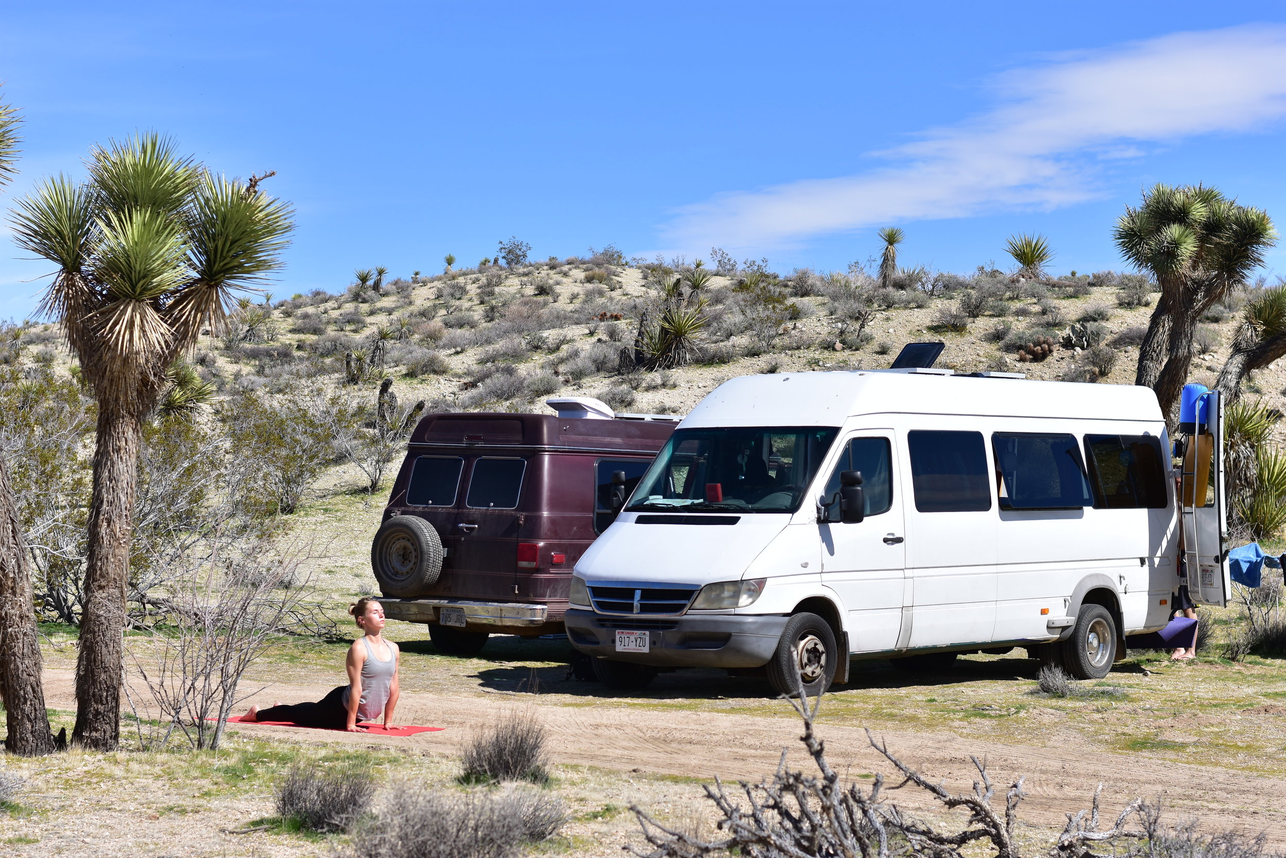 Yucca Valley