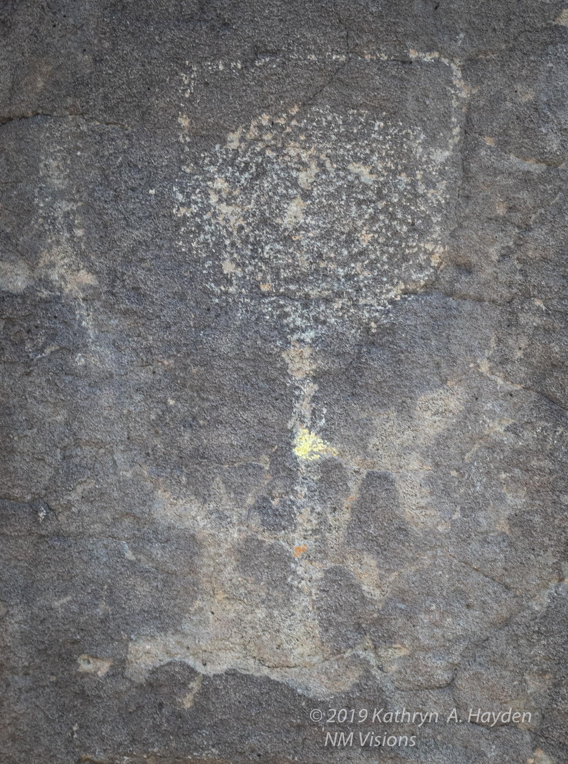 taospetroglyphs_nmvisions-31.jpg