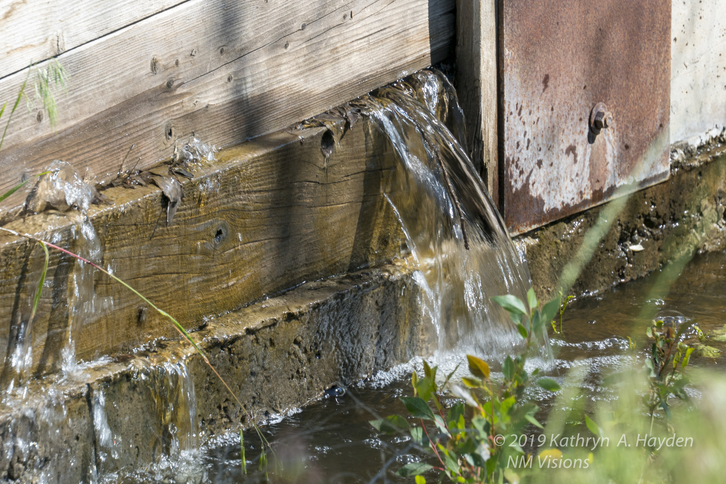 water pouring through the acequia, again an uncommon view for this piece of land.