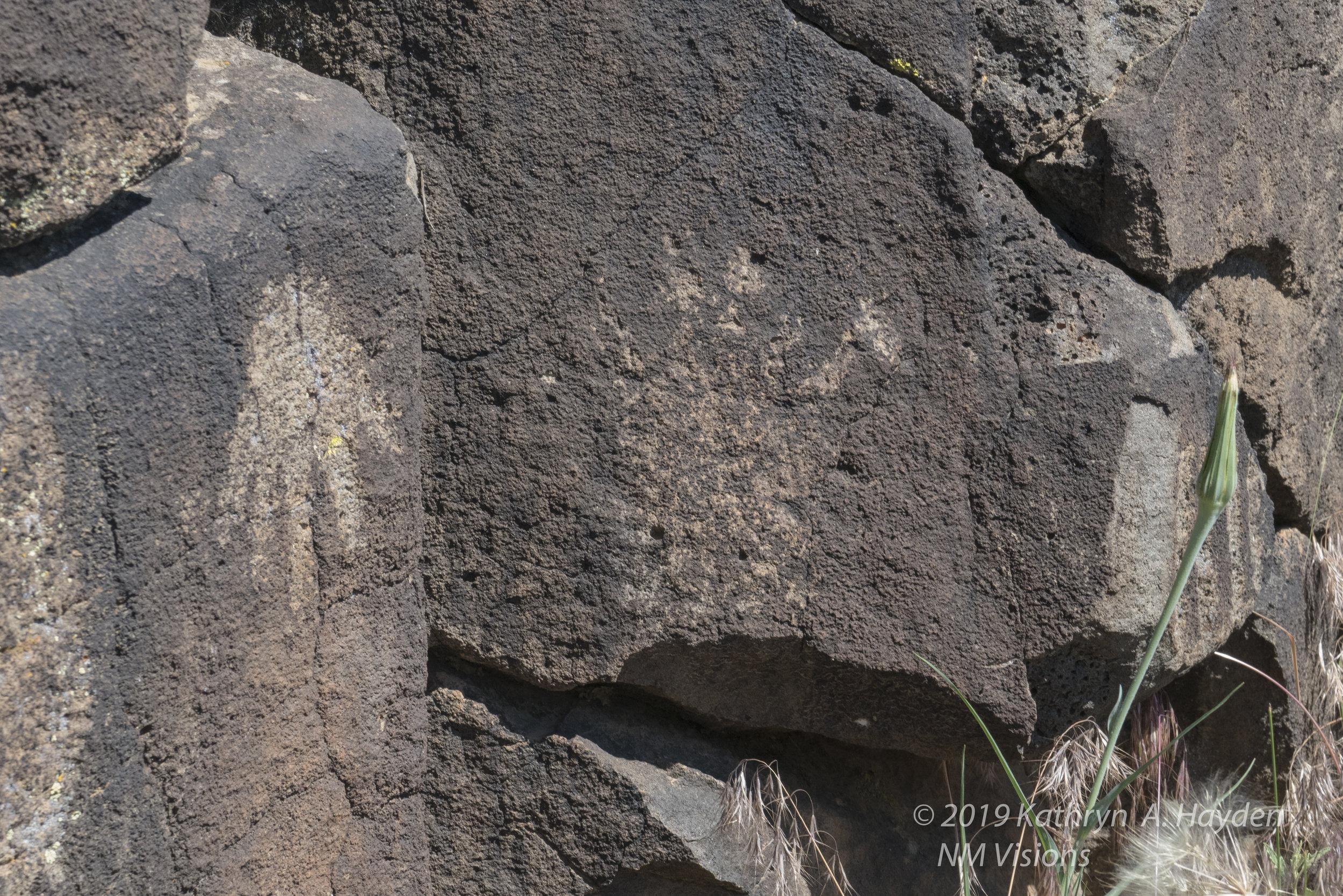 taospetroglyphs_nmvisions-55.jpg