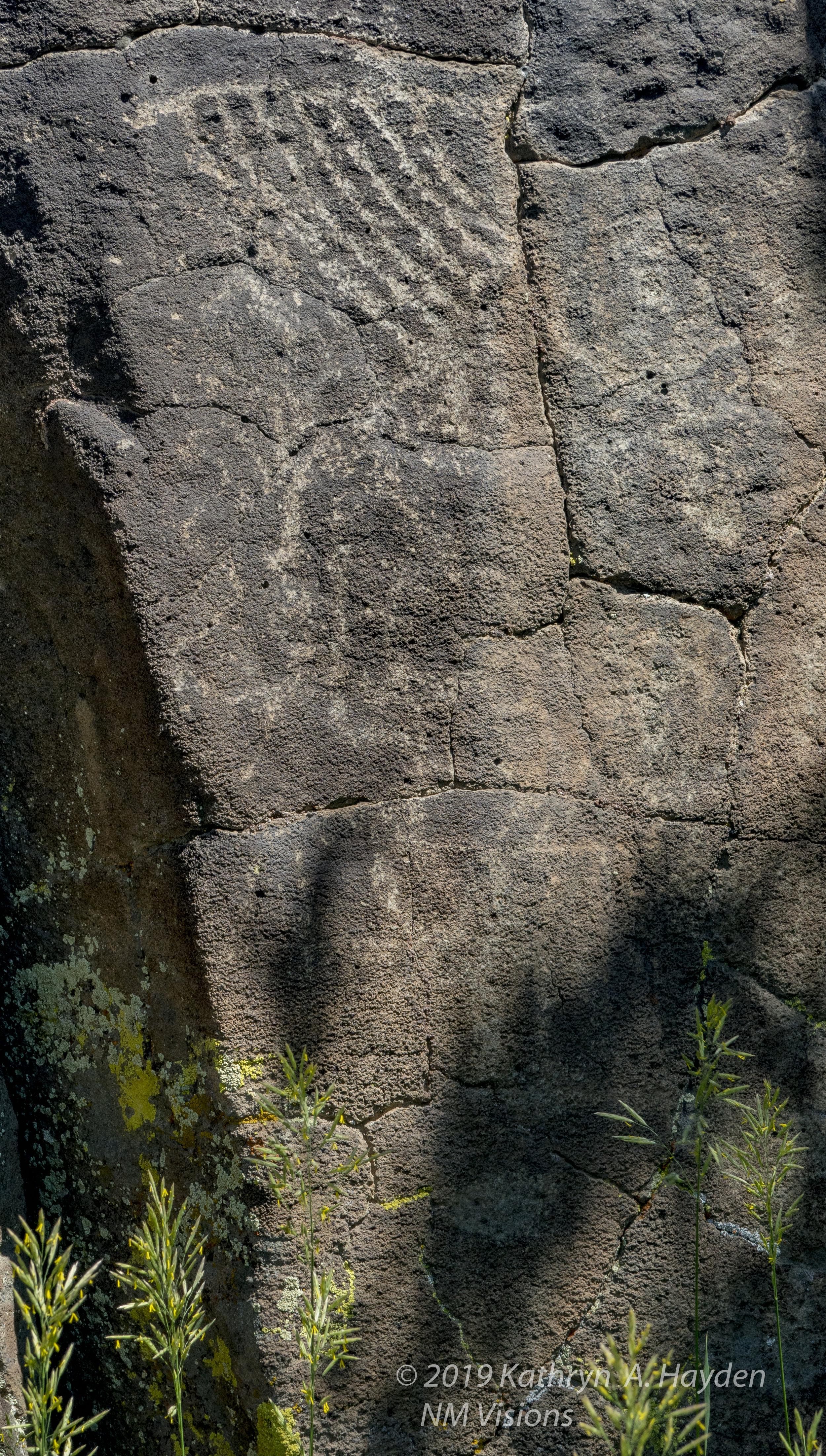 taospetroglyphs_nmvisions-66.jpg