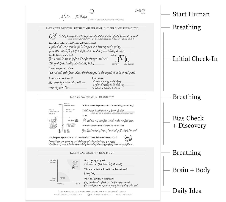 journal-anatomy-1.jpg