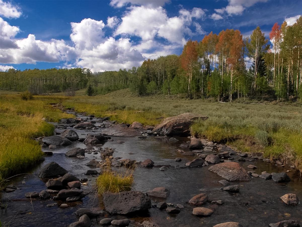 Duck creek6.jpg