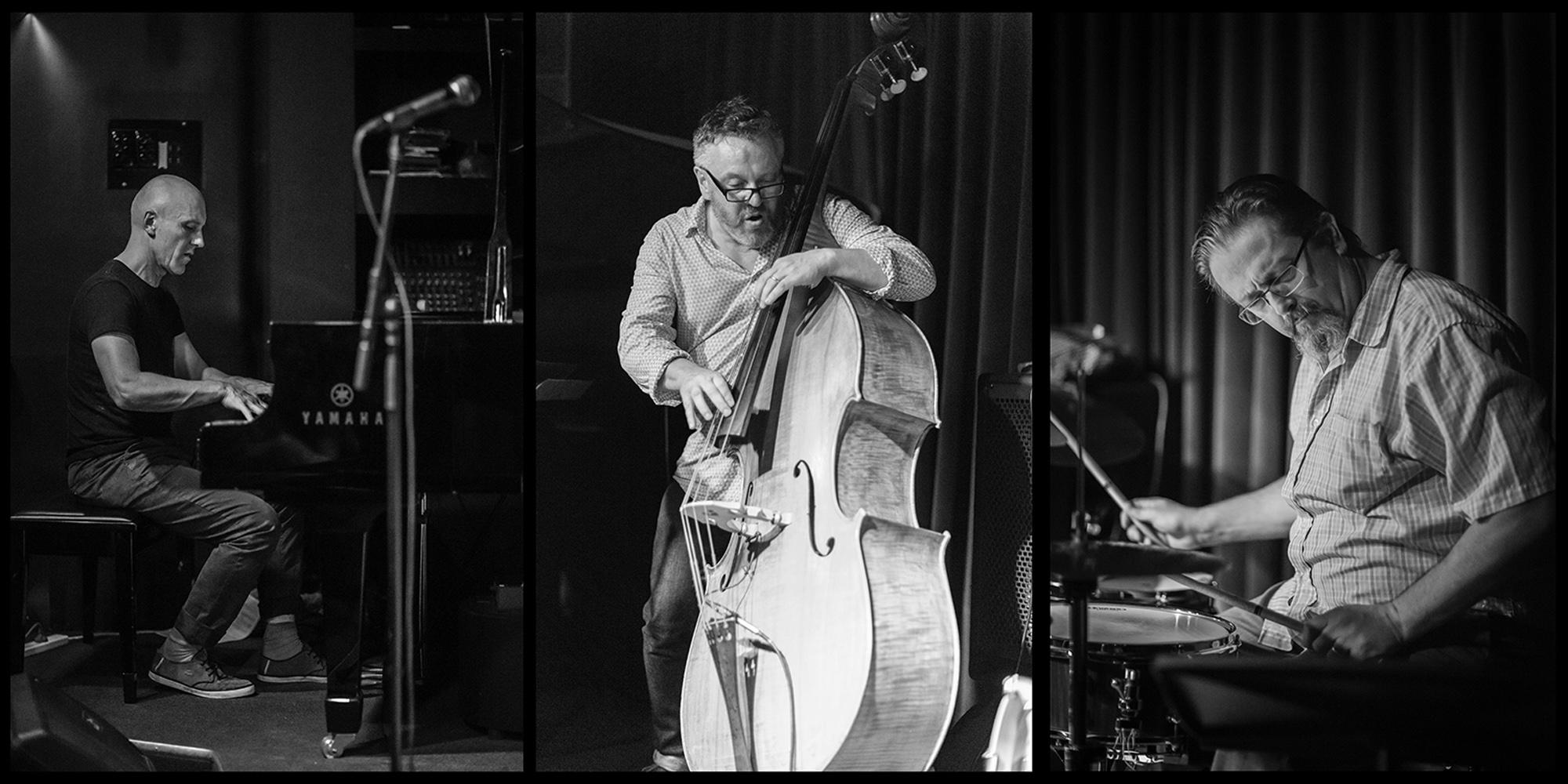 Colin Hopkins Trio.jpg