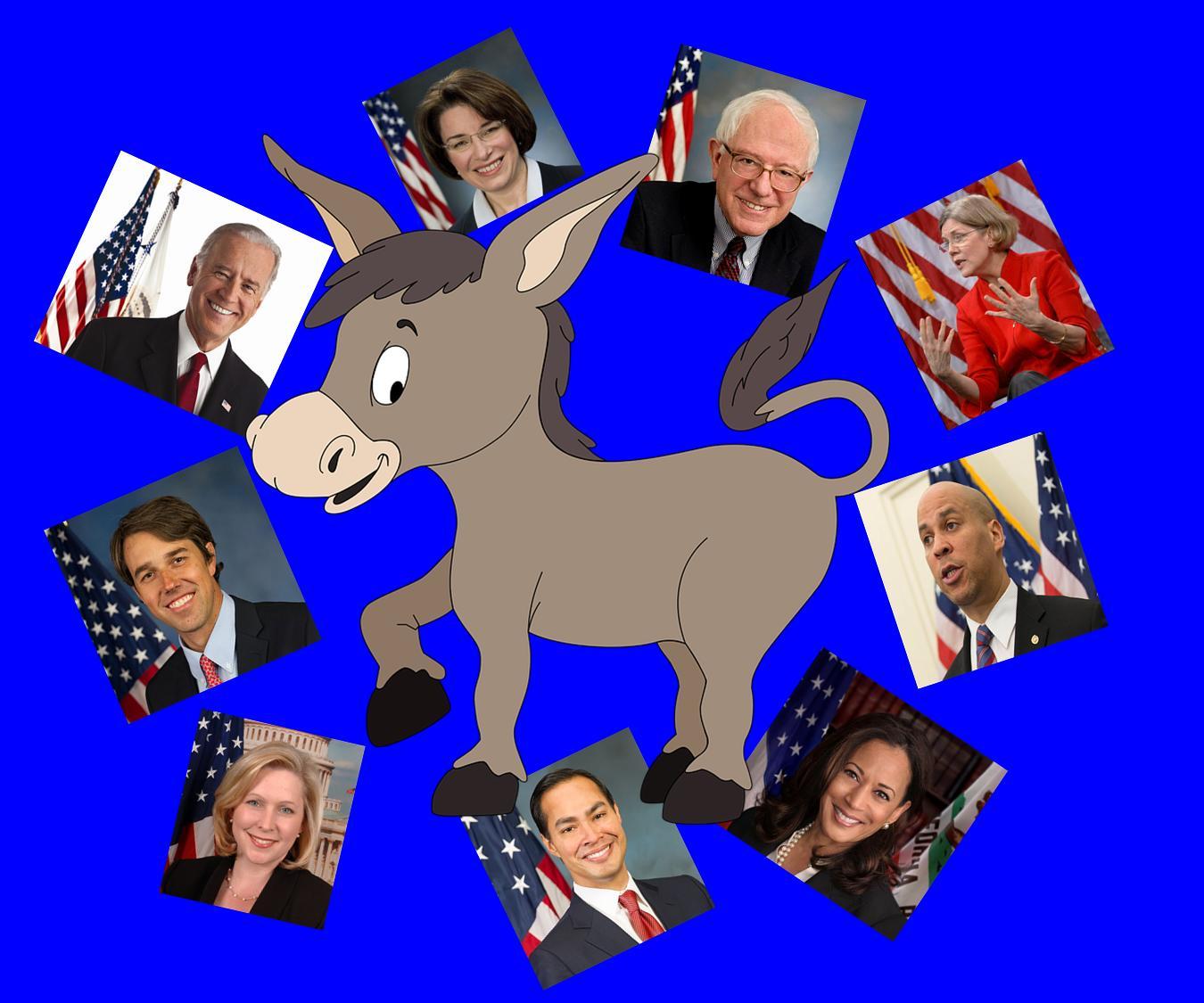 How many Dems.jpg