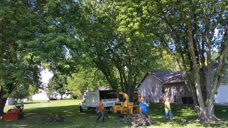 Lot Clearing -